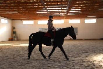 2_Bettina_riding